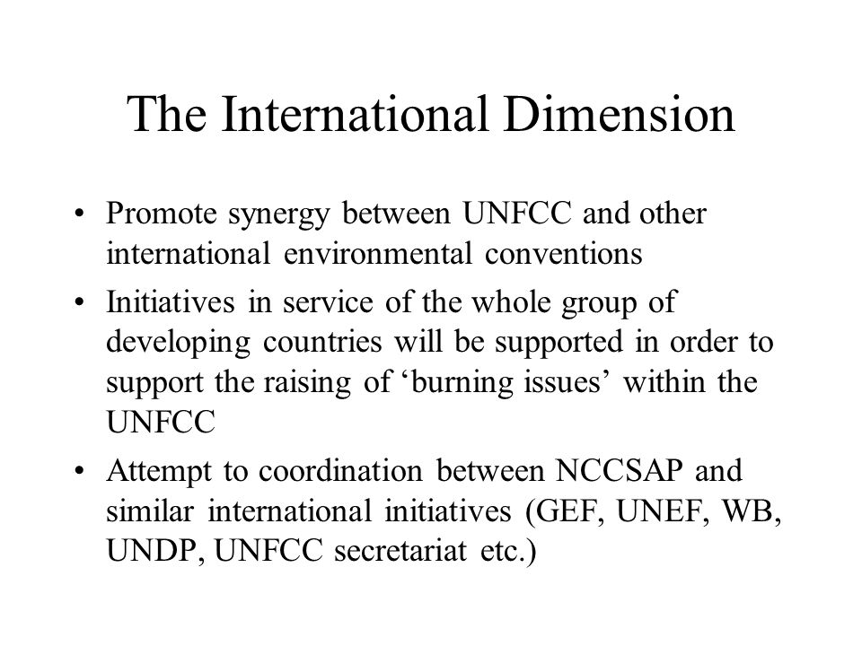 The International Dimension Promote synergy between UNFCC and other international environmental conventions Initiatives in service of the whole group
