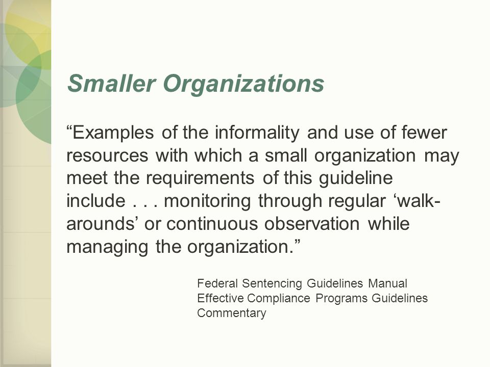 Smaller Organizations Examples of the informality and use of fewer resources with which a small organization may meet the requirements of this guideline include...
