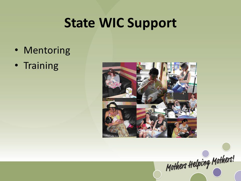 State WIC Support Mentoring Training