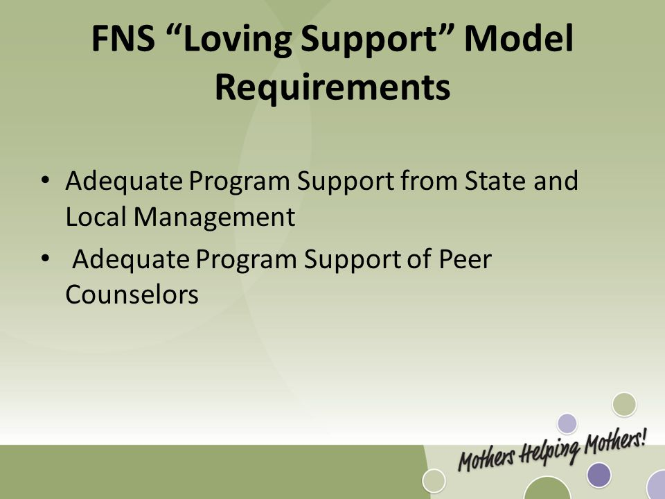 FNS Loving Support Model Requirements Adequate Program Support from State and Local Management Adequate Program Support of Peer Counselors