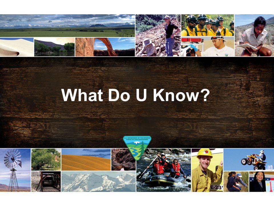 What Do U Know?