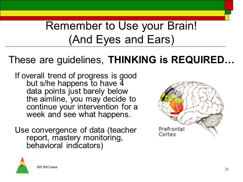 MN RtI Center 23 Remember to Use your Brain.