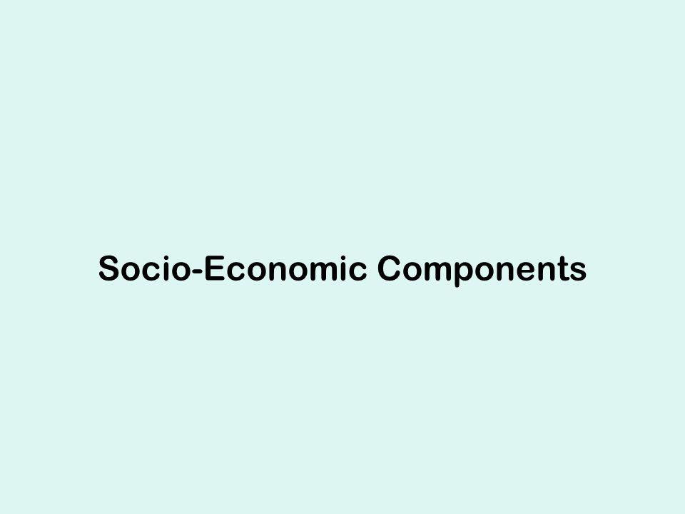 Socio-Economic Components