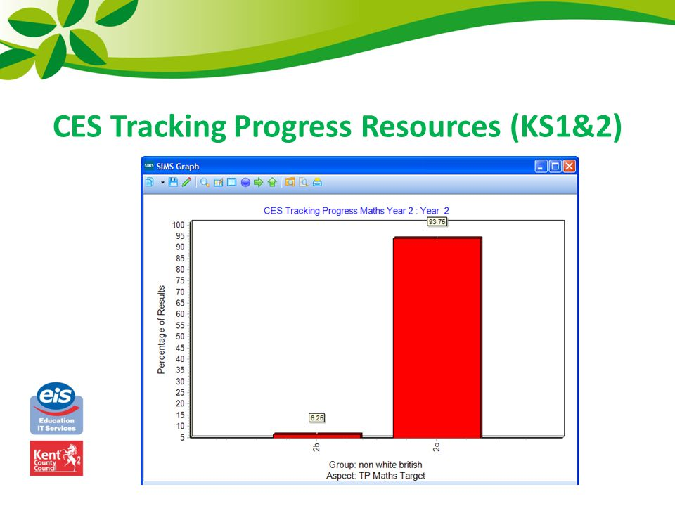 CES Tracking Progress Resources (KS1&2)