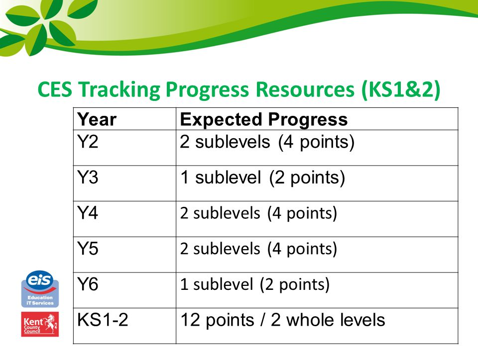 YearExpected Progress Y22 sublevels (4 points) Y31 sublevel (2 points) Y4 2 sublevels (4 points) Y5 2 sublevels (4 points) Y6 1 sublevel (2 points) KS1-212 points / 2 whole levels CES Tracking Progress Resources (KS1&2)