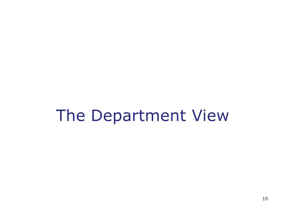 16 The Department View
