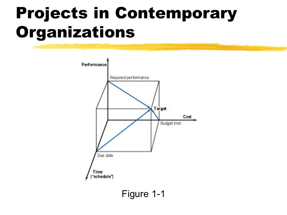 Projects in Contemporary Organizations Figure 1-1