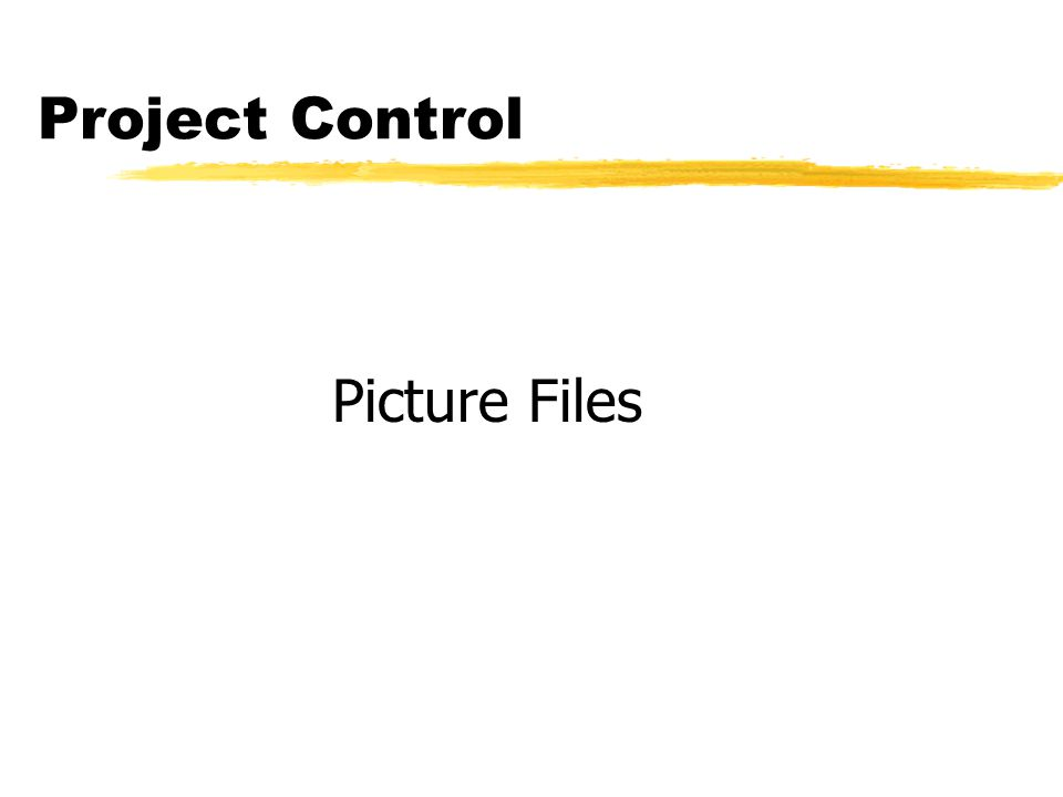 Project Control Picture Files