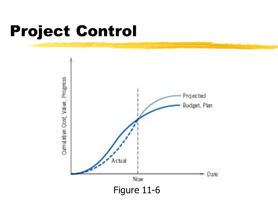 Project Control Figure 11-6