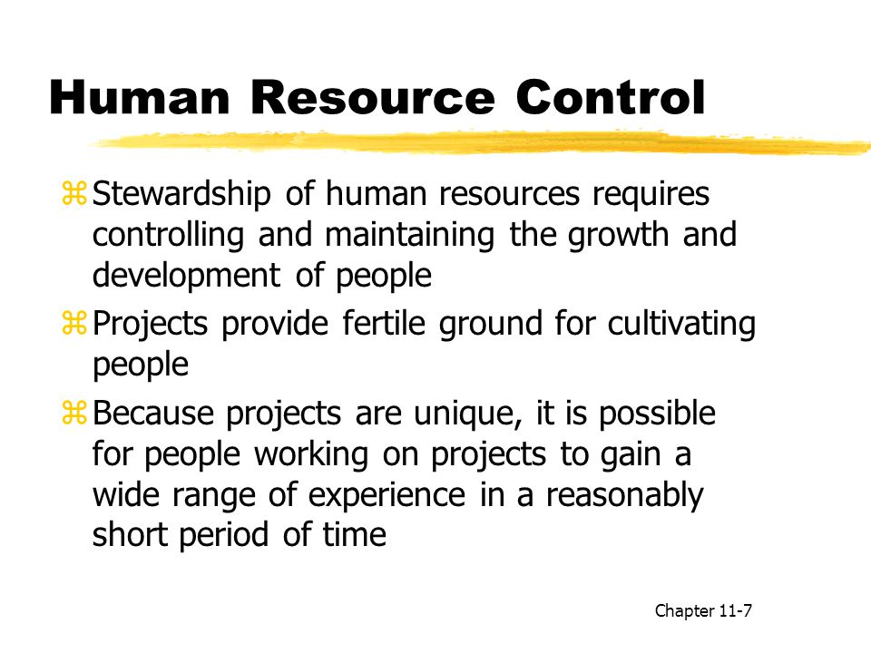 Human Resource Control zStewardship of human resources requires controlling and maintaining the growth and development of people zProjects provide fertile ground for cultivating people zBecause projects are unique, it is possible for people working on projects to gain a wide range of experience in a reasonably short period of time Chapter 11-7