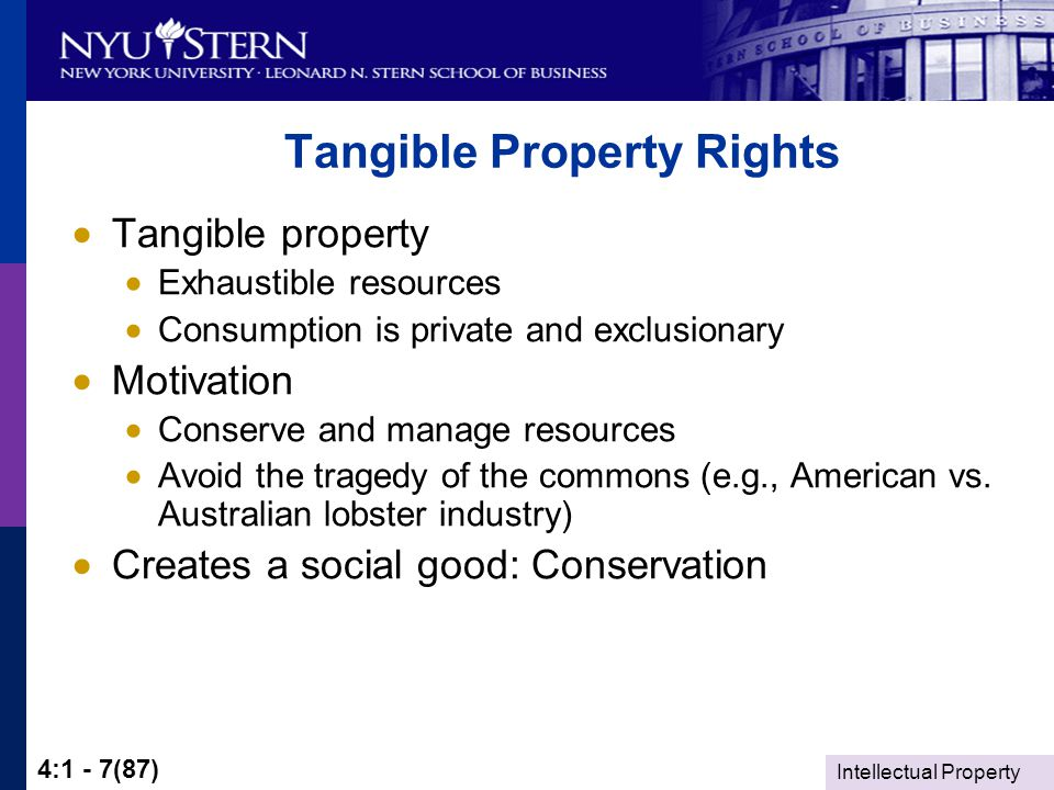 Intellectual Property 4:1 - 7(87) Tangible Property Rights  Tangible property  Exhaustible resources  Consumption is private and exclusionary  Motivation  Conserve and manage resources  Avoid the tragedy of the commons (e.g., American vs.