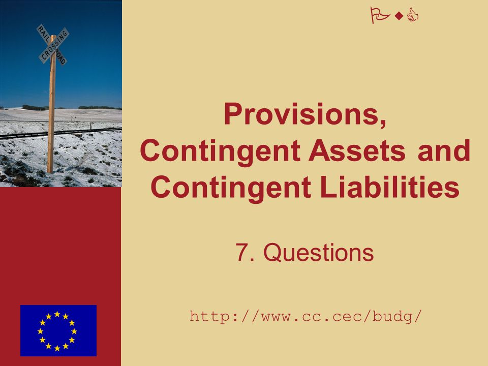 PwC Provisions, Contingent Assets and Contingent Liabilities 7. Questions http://www.cc.cec/budg/
