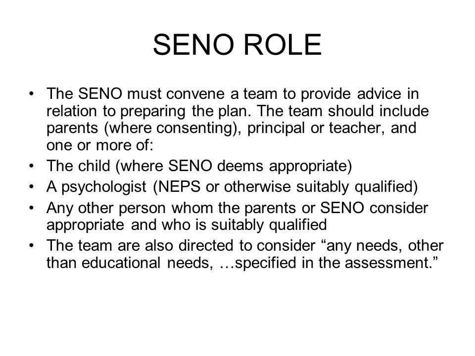 SENO ROLE The SENO must convene a team to provide advice in relation to preparing the plan.