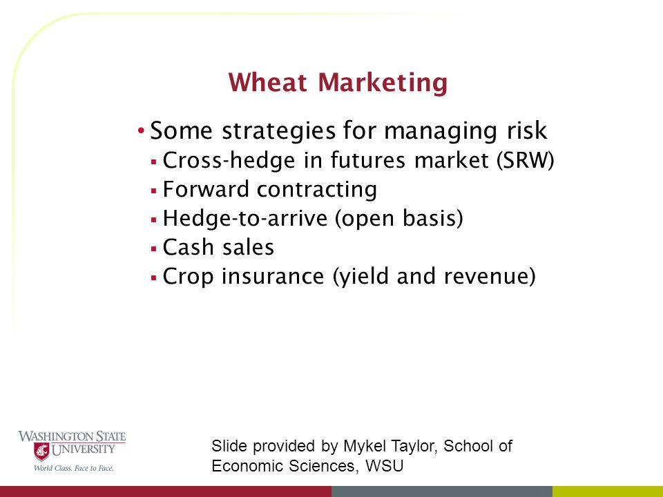 Wheat Marketing Some strategies for managing risk  Cross-hedge in futures market (SRW)  Forward contracting  Hedge-to-arrive (open basis)  Cash sales  Crop insurance (yield and revenue) Slide provided by Mykel Taylor, School of Economic Sciences, WSU