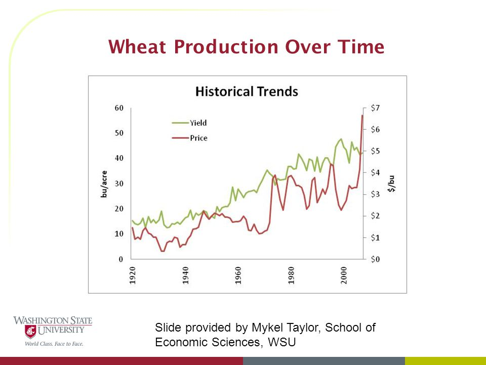 Wheat Production Over Time Slide provided by Mykel Taylor, School of Economic Sciences, WSU