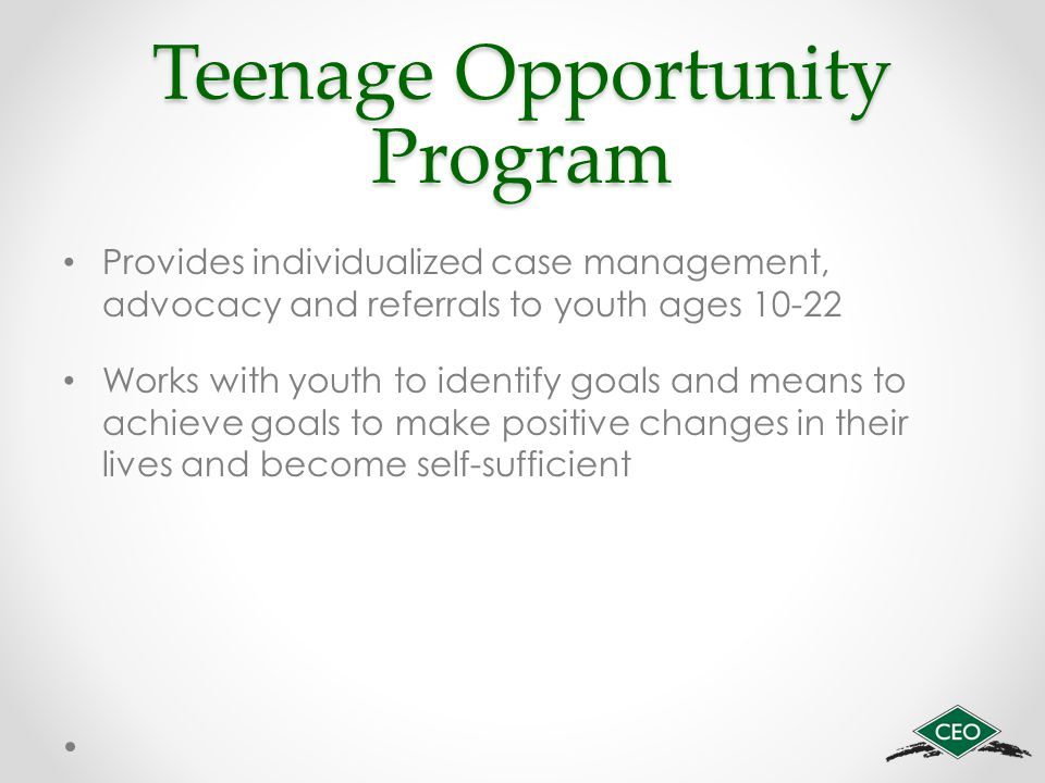 Teenage Opportunity Program Provides individualized case management, advocacy and referrals to youth ages 10-22 Works with youth to identify goals and means to achieve goals to make positive changes in their lives and become self-sufficient