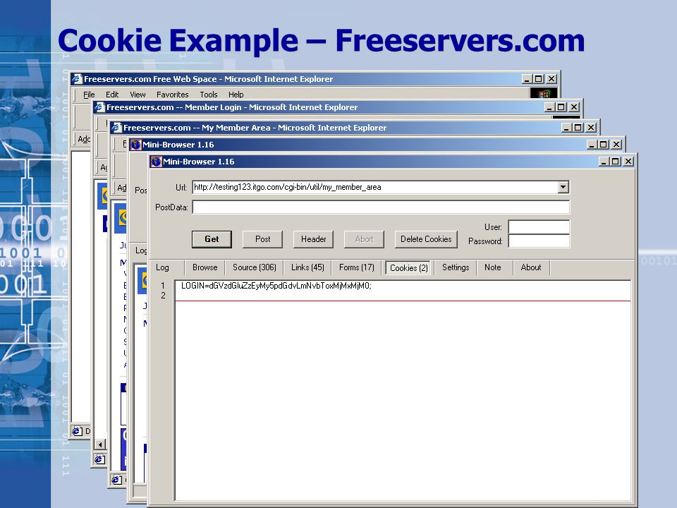 Copyright © 2002 iDEFENSE Inc. Cookie Example – Freeservers.com