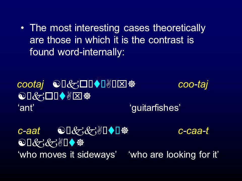 This rule + these restrictions = surface contrast cosi =ha [Èkosùiù?A]coos =iha [Èkosùi?a] 'it is a thorn' 's/he is singing' cootaj [ÈkoùtùAùx] coo-taj [ÈkoùtAx] 'ant' 'guitarfish (pl.)' taama [ÈtAùmùA] i-táa ma [iÈtAùmA] 's/he was living...' 's/he was holding it...'