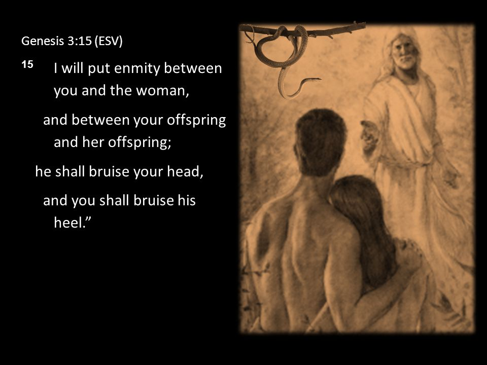 Genesis 3:15 (ESV) 15 I will put enmity between you and the woman, and between your offspring and her offspring; he shall bruise your head, and you shall bruise his heel.