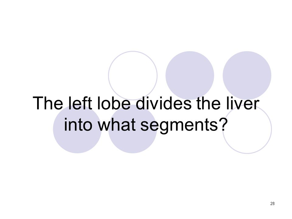 28 The left lobe divides the liver into what segments