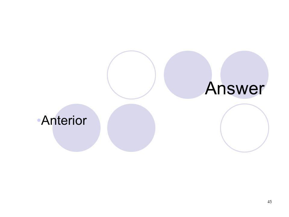 45 Answer Anterior