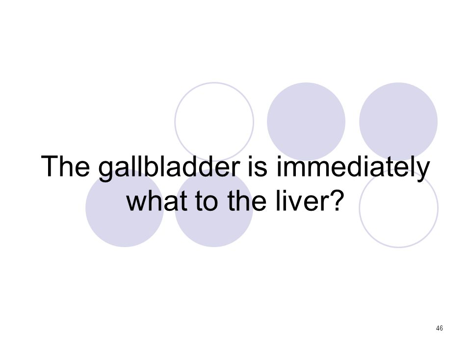 46 The gallbladder is immediately what to the liver