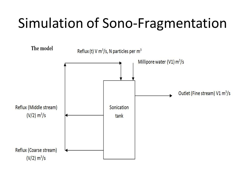 Simulation of Sono-Fragmentation