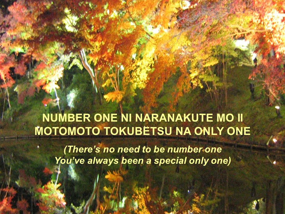 NUMBER ONE NI NARANAKUTE MO II MOTOMOTO TOKUBETSU NA ONLY ONE (There's no need to be number one You've always been a special only one)