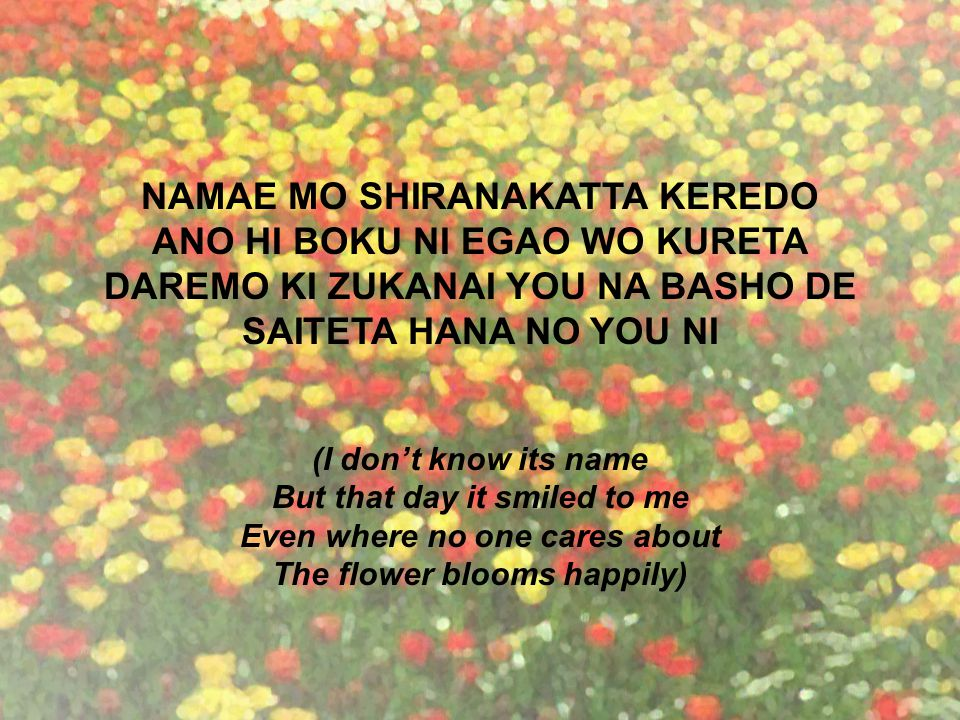 NAMAE MO SHIRANAKATTA KEREDO ANO HI BOKU NI EGAO WO KURETA DAREMO KI ZUKANAI YOU NA BASHO DE SAITETA HANA NO YOU NI (I don't know its name But that day it smiled to me Even where no one cares about The flower blooms happily)