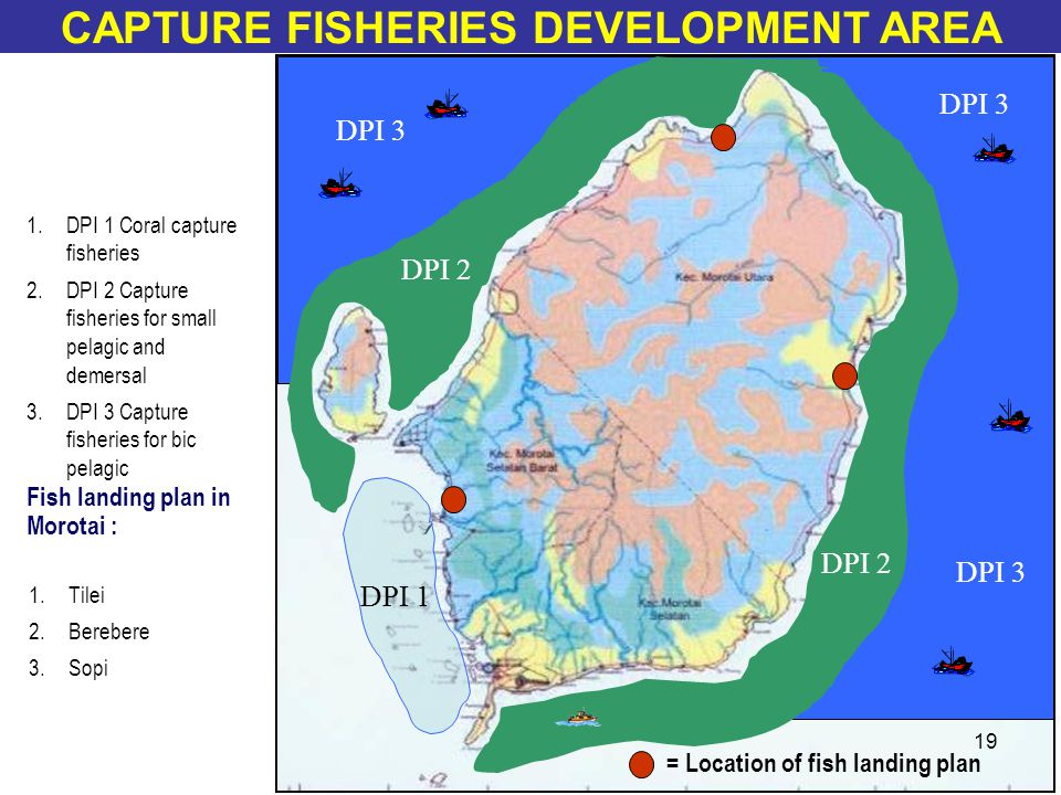 1.DPI 1 Coral capture fisheries 2.DPI 2 Capture fisheries for small pelagic and demersal 3.DPI 3 Capture fisheries for bic pelagic DPI 2 DPI 3 DPI 1 CAPTURE FISHERIES DEVELOPMENT AREA Fish landing plan in Morotai : 1.Tilei 2.Berebere 3.Sopi = Location of fish landing plan 19