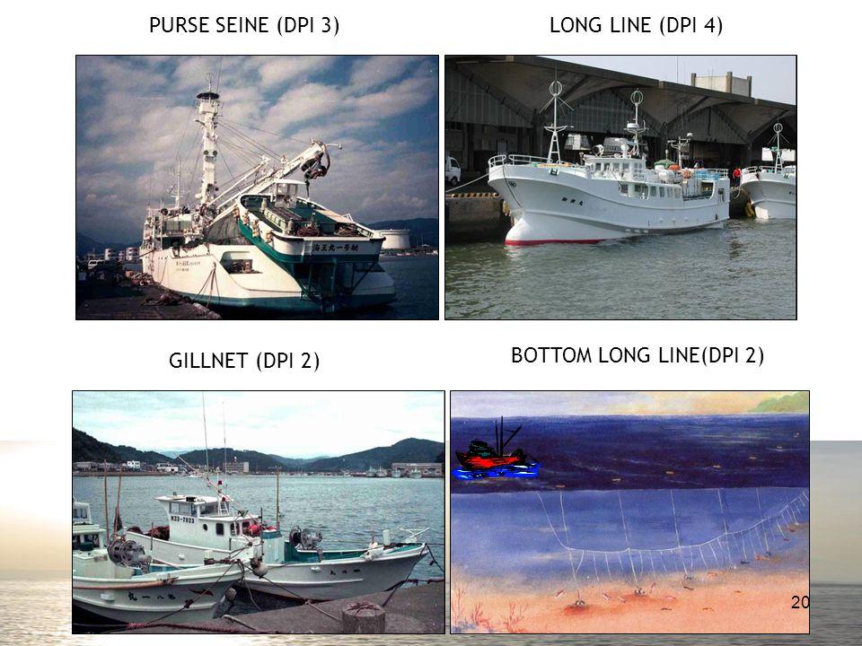 PURSE SEINE (DPI 3)LONG LINE (DPI 4) GILLNET (DPI 2) BOTTOM LONG LINE(DPI 2) 20