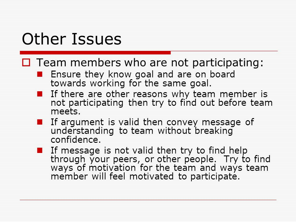 Other Issues  Team members who are not participating: Ensure they know goal and are on board towards working for the same goal.