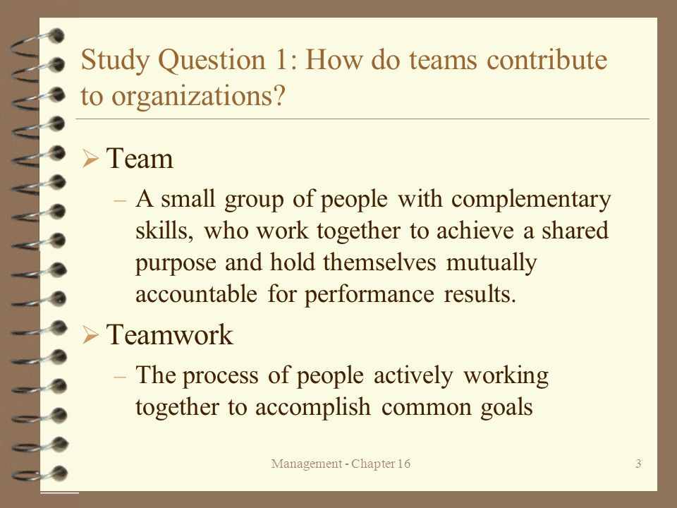 Management - Chapter 1624 Study Question 3: How do teams work.