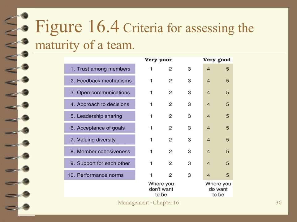 Management - Chapter 1630 Figure 16.4 Criteria for assessing the maturity of a team.