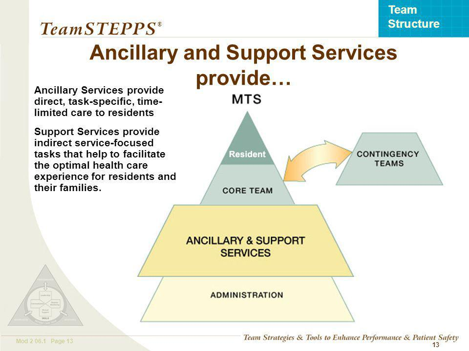 T EAM STEPPS 05.2 Mod Page 13 Team Structure ® 13 Ancillary Services provide direct, task-specific, time- limited care to residents Support Services provide indirect service-focused tasks that help to facilitate the optimal health care experience for residents and their families.