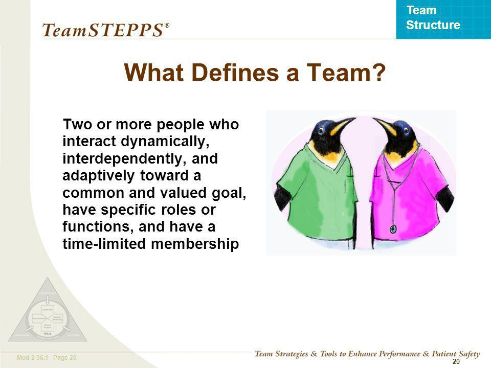 T EAM STEPPS 05.2 Mod Page 20 Team Structure ® 20 Two or more people who interact dynamically, interdependently, and adaptively toward a common and valued goal, have specific roles or functions, and have a time-limited membership What Defines a Team