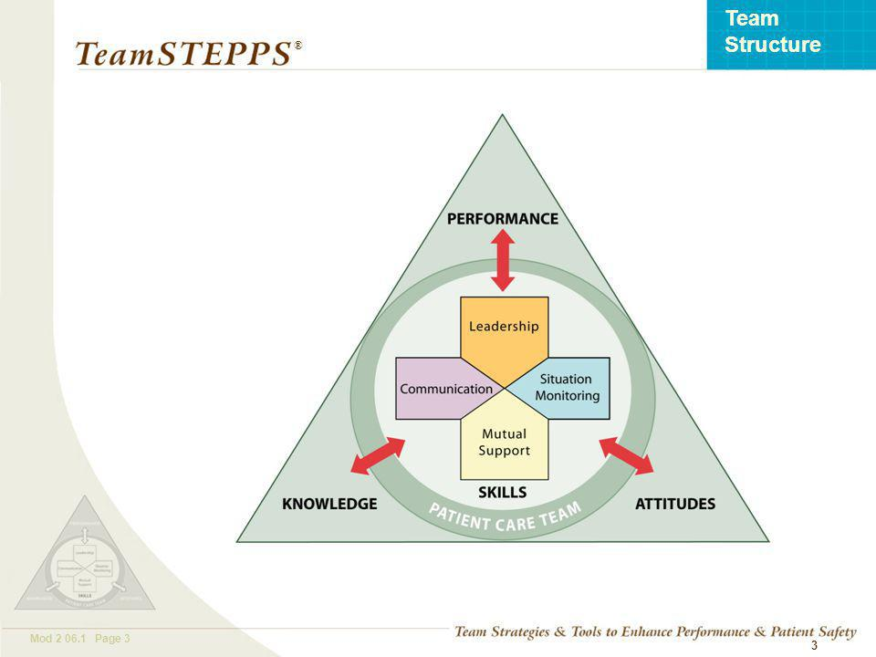 T EAM STEPPS 05.2 Mod Page 3 Team Structure ® 3