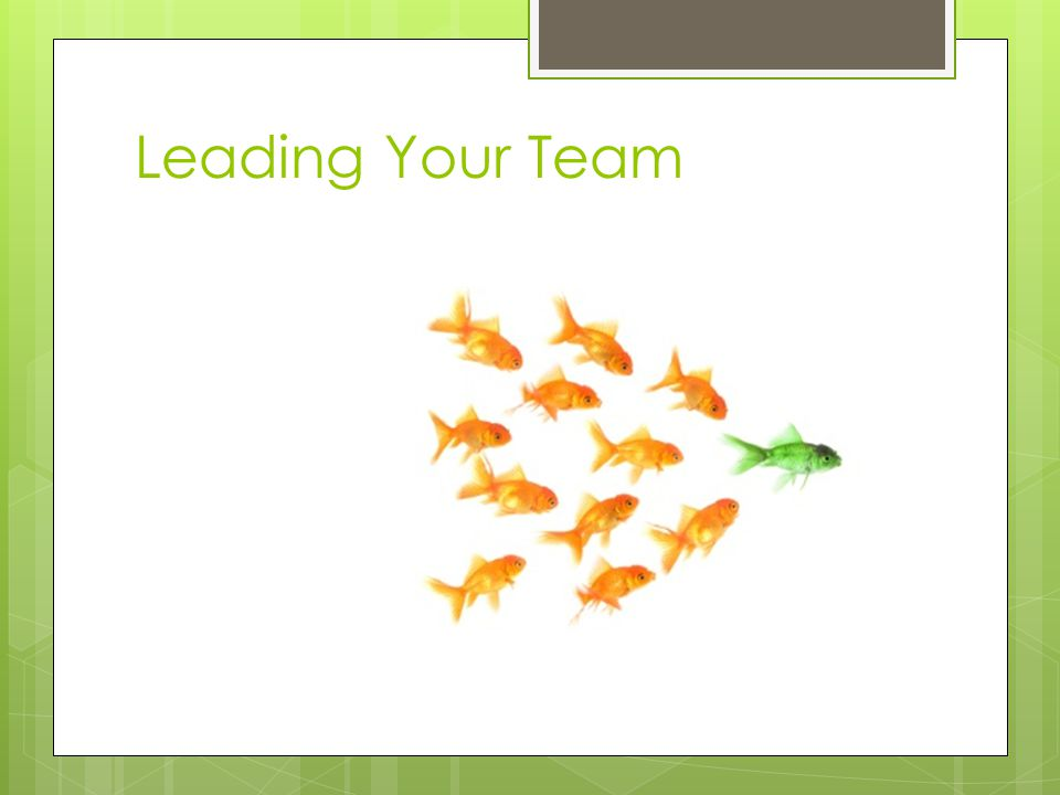 #5 – Inattention to Results  Teams that are not focused on results…  May be focused on team status  May be focused on individual careers/goals