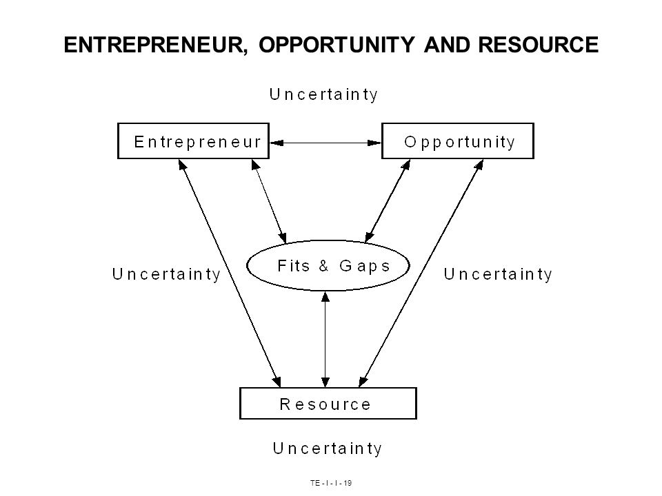 TE - I - I - 19 ENTREPRENEUR, OPPORTUNITY AND RESOURCE