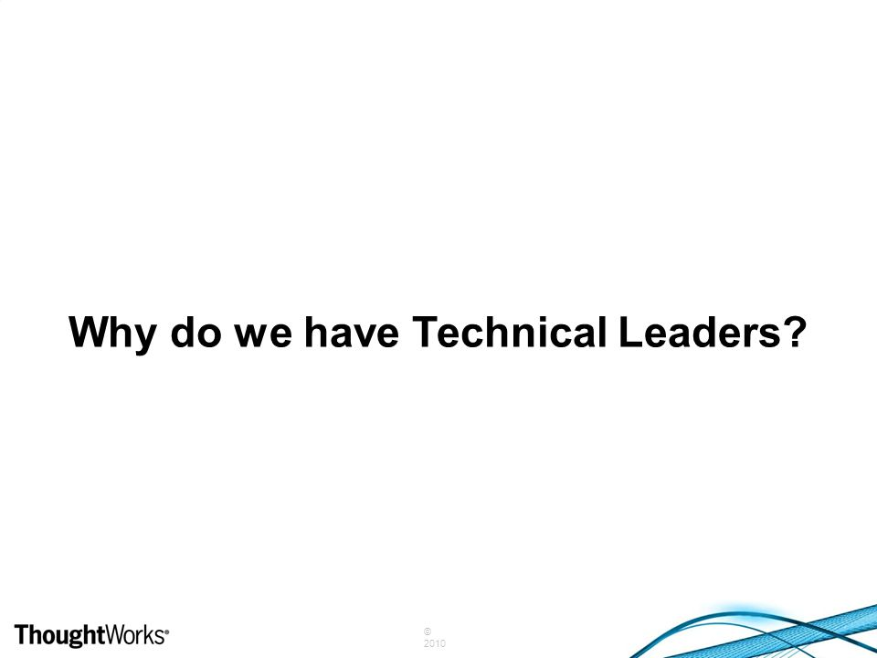 Why do we have Technical Leaders?