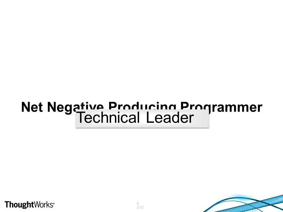 Net Negative Producing Programmer Technical Leader