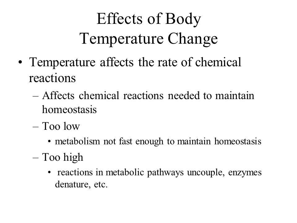 Total Body Heat H total = H v + H c + H r + H e + H s H v = heat produced by metabolism (+) H c = heat loss/gain by conduction and convection (+/-) H r = heat transfer via radiation (+/-) H e = heat loss by evaporation (-) H s = stored heat (+)