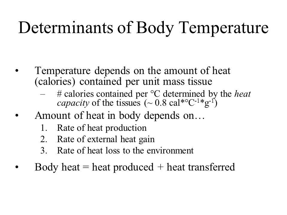 Endothermic vs.
