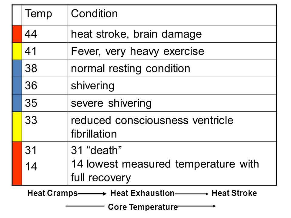 TempCondition 44heat stroke, brain damage 41Fever, very heavy exercise 38normal resting condition 36shivering 35severe shivering 33reduced consciousne