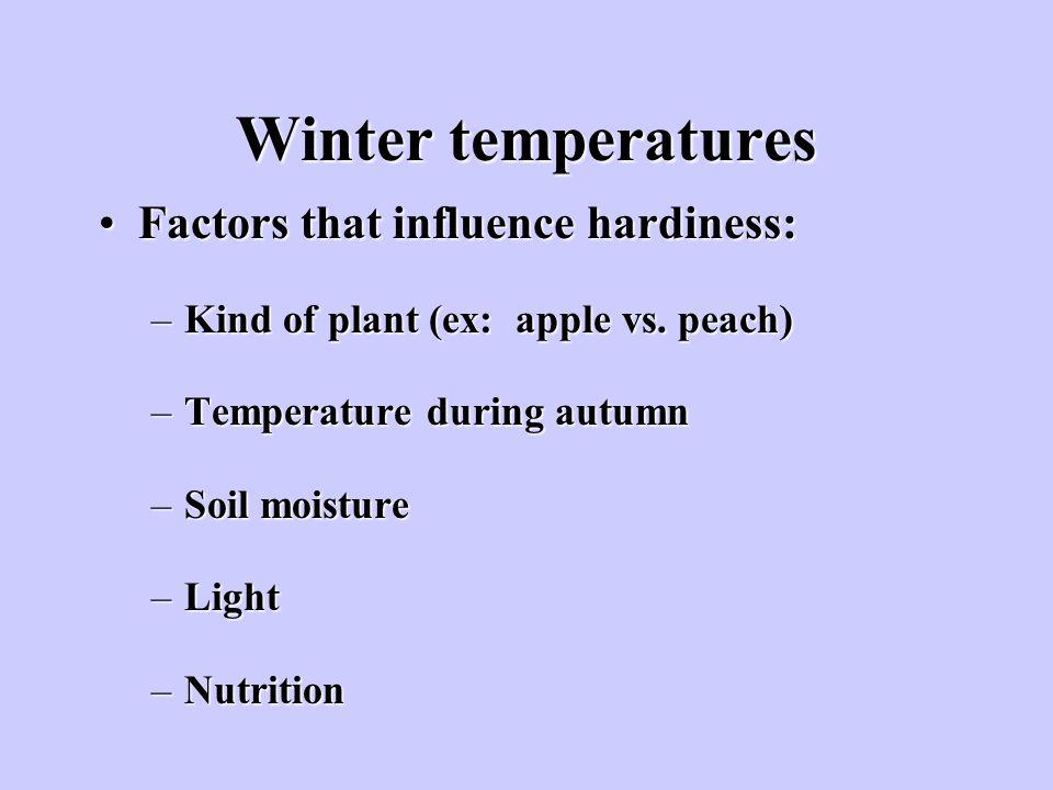 Winter temperatures Factors that influence hardiness:Factors that influence hardiness: –Kind of plant (ex: apple vs. peach) –Temperature during autumn