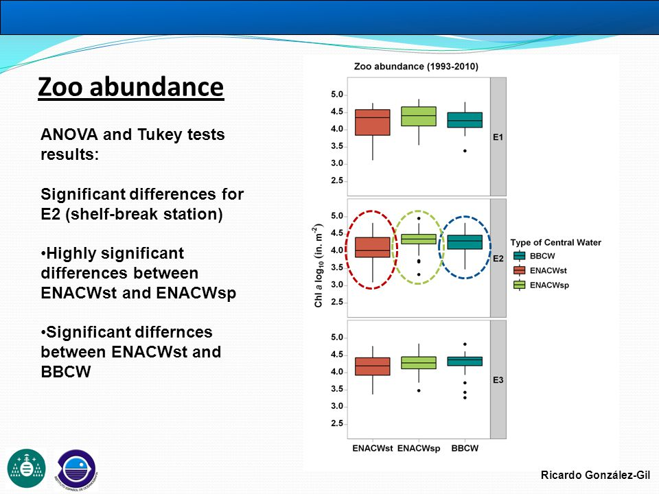 Ricardo González-Gil ANOVA and Tukey tests results: Significant differences for E2 (shelf-break station) Highly significant differences between ENACWst and ENACWsp Significant differnces between ENACWst and BBCW Zoo abundance