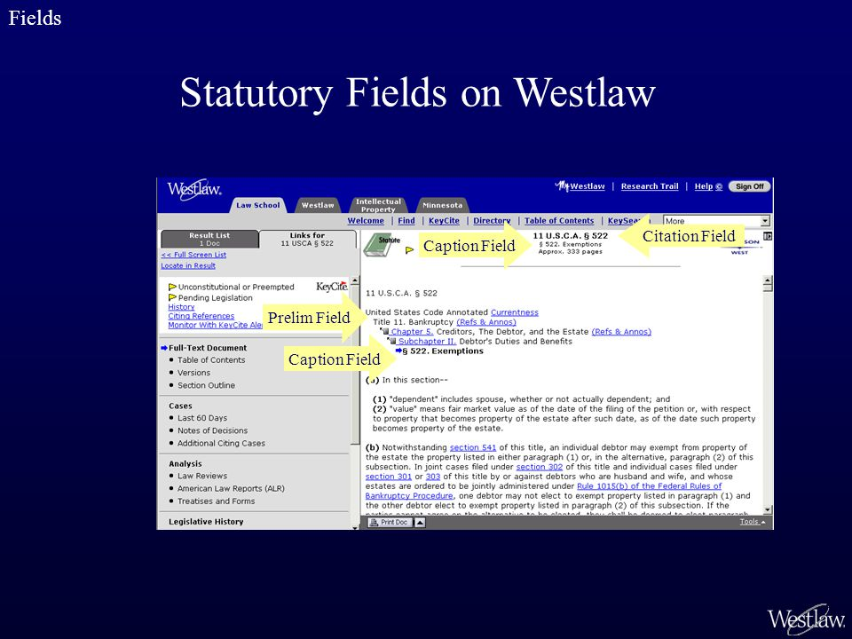 Caption Field Prelim Field Statutory Fields on Westlaw Fields Caption Field Citation Field