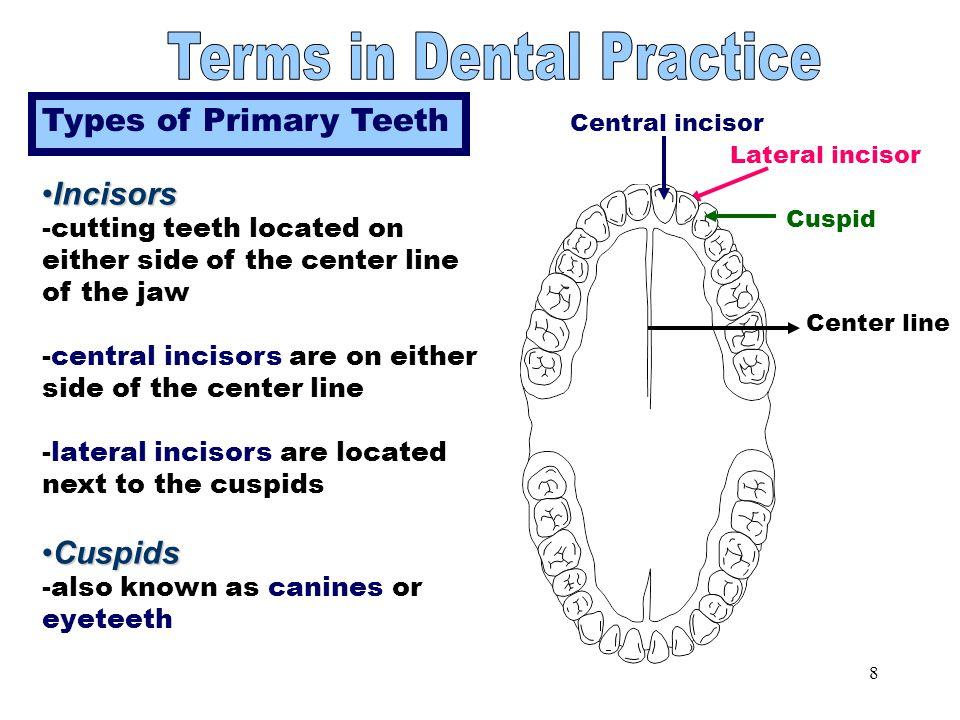 18 Other Treatments Temporomandibular joint (TMJ) dysfunction Cosmetic Surgery Bleaching of teeth