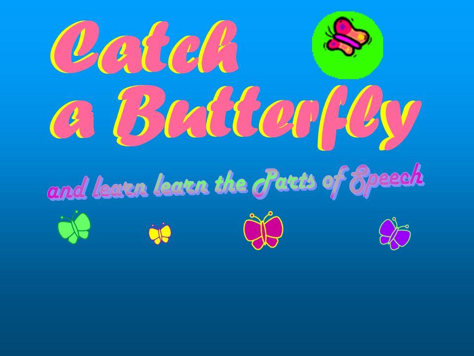 Catch a Butterfly Catch a Butterfly