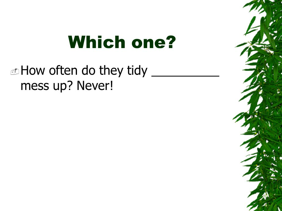 Which one  How often do they tidy __________ mess up Never!